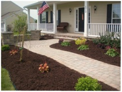 Benefits of Landscape Mulch | New Haven & Fairfield County, Connecticut