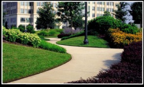 Commercial Landscape Design and Maintenance Services | Hamden, CT