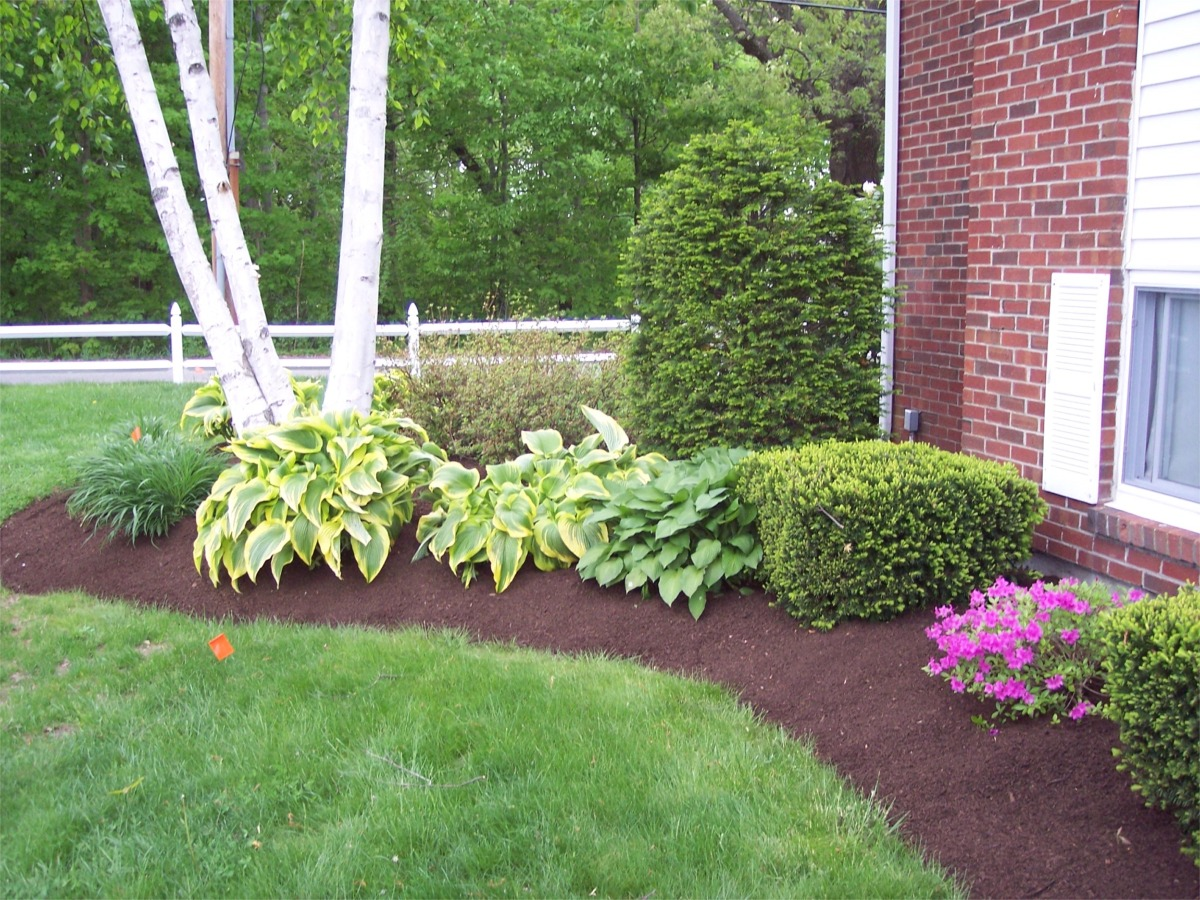Mulch portfolio affordable landscaping tree service Pictures of landscaping ideas