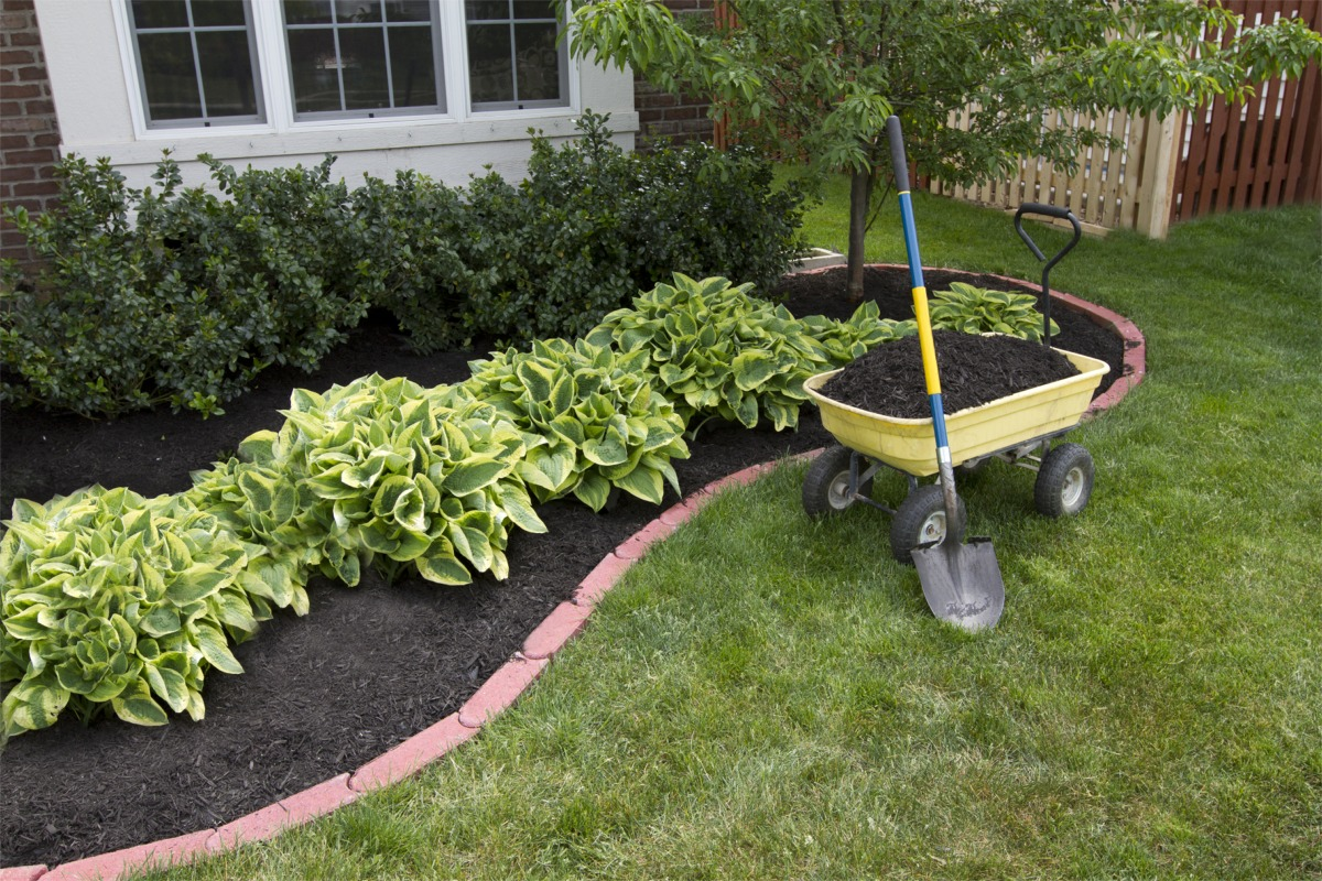 Portfolio Mulch on Square Plastic Planter Home Depot